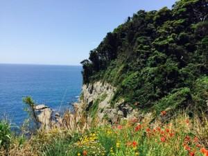 江ノ島(断崖絶壁)