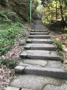 鎌倉ハイキング1